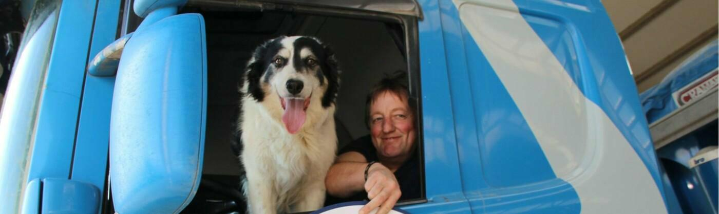 Meet the STAS dog Jules, the border collie co-pilot